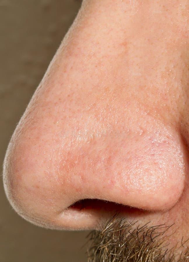 Free Male Nose Macro Stock Image - 23921901