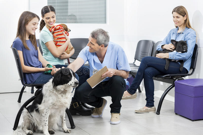 Male Nurse Crouching By Pets And Owners In Waiting Area. Smiling male nurse crouching by pets and owners in waiting area of clinic royalty free stock photo