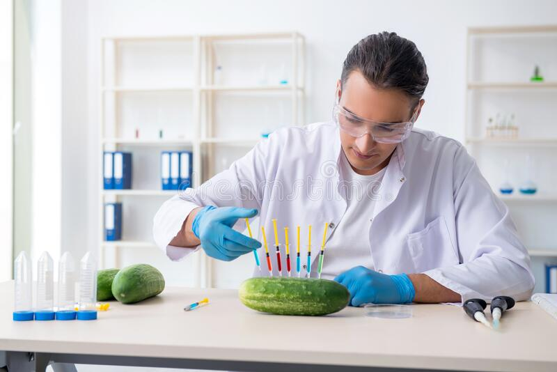 Male nutrition expert testing vegetables in lab stock image