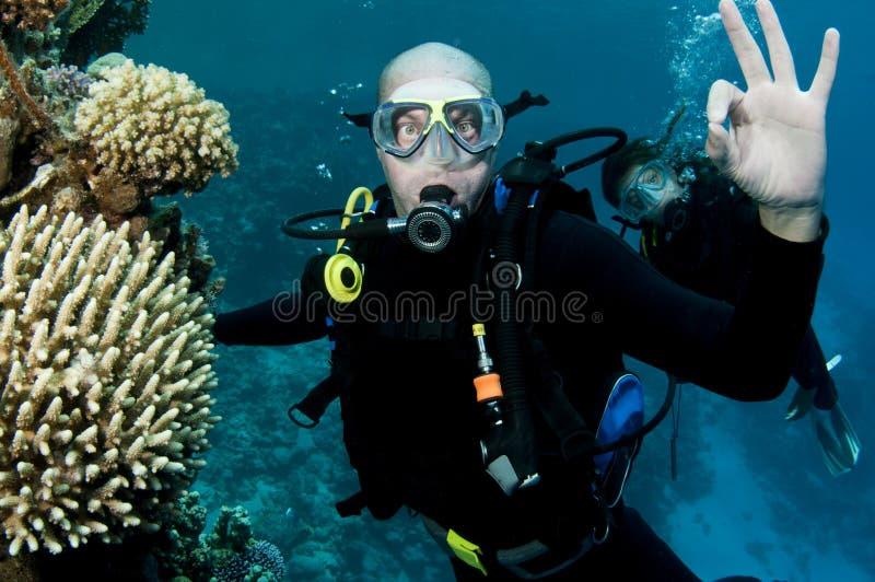 male ok scubasighn för dykare royaltyfri foto