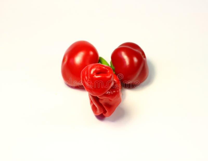 Chili Pepper szklane dildo w kształcie papryczki