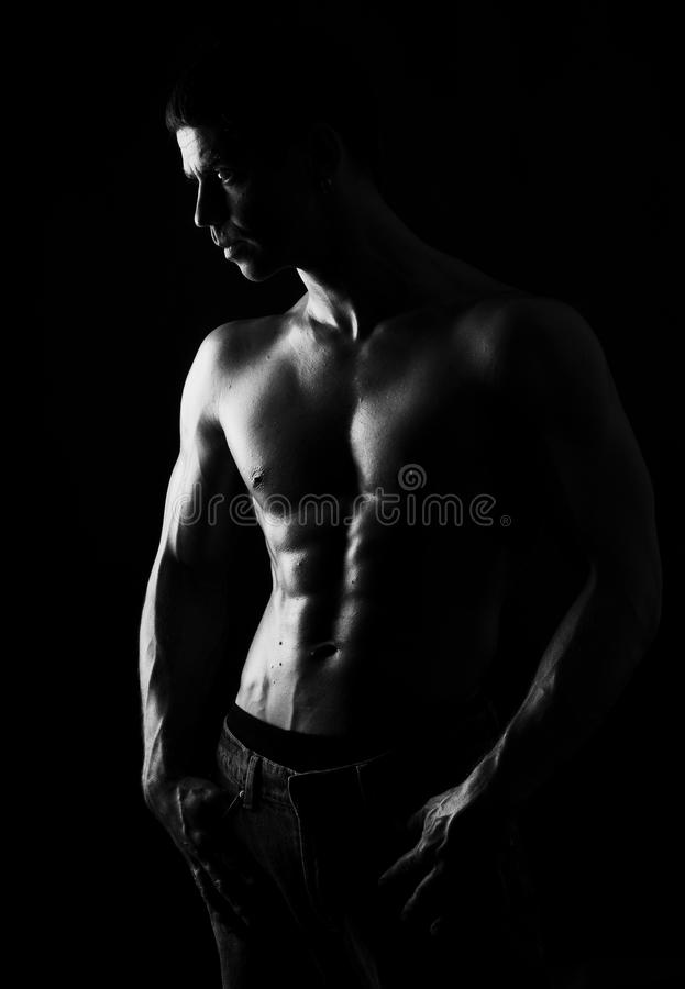 Download The male portrait. stock image. Image of copyspace, bodybuilding - 10072931