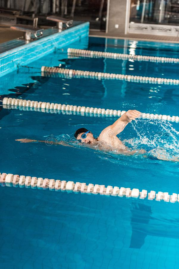 Young male professional swimmer in competition swimming. Pool royalty free stock image