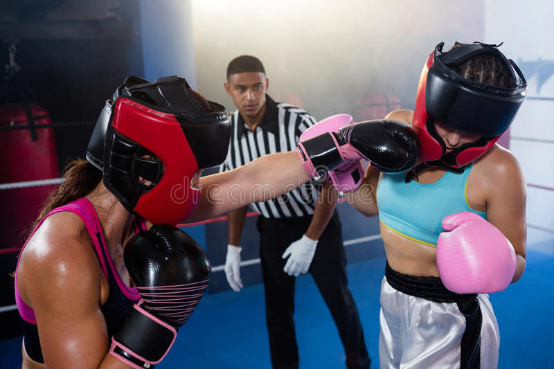 Male referee looking at female boxer punching competitor royalty free stock image