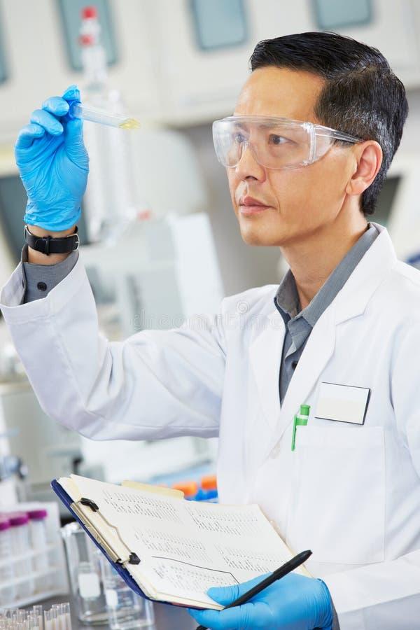 Male Scientist Working In Laboratory stock photo