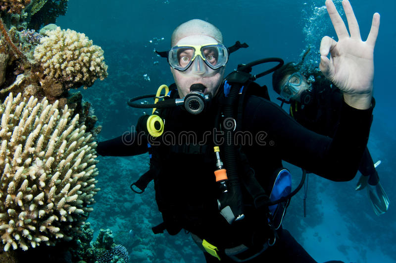 Male scuba diver ,OK sighn royalty free stock photo