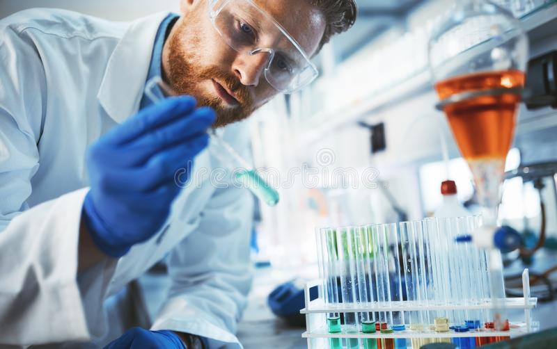 Male student of chemistry working in laboratory royalty free stock photo