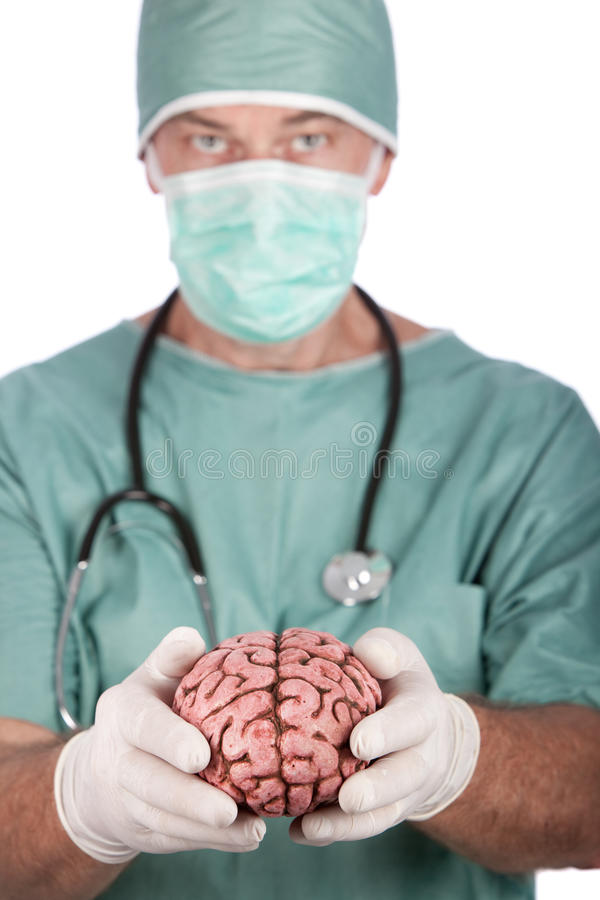 Download Male Surgeon Holding Brain stock image. Image of male - 13294955