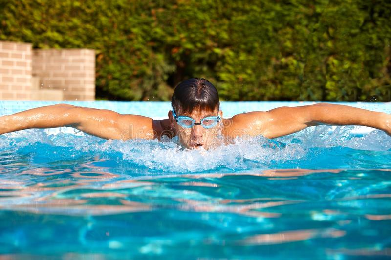 Download Male Swimmer In Swimming Pool Stock Photo - Image: 24191700