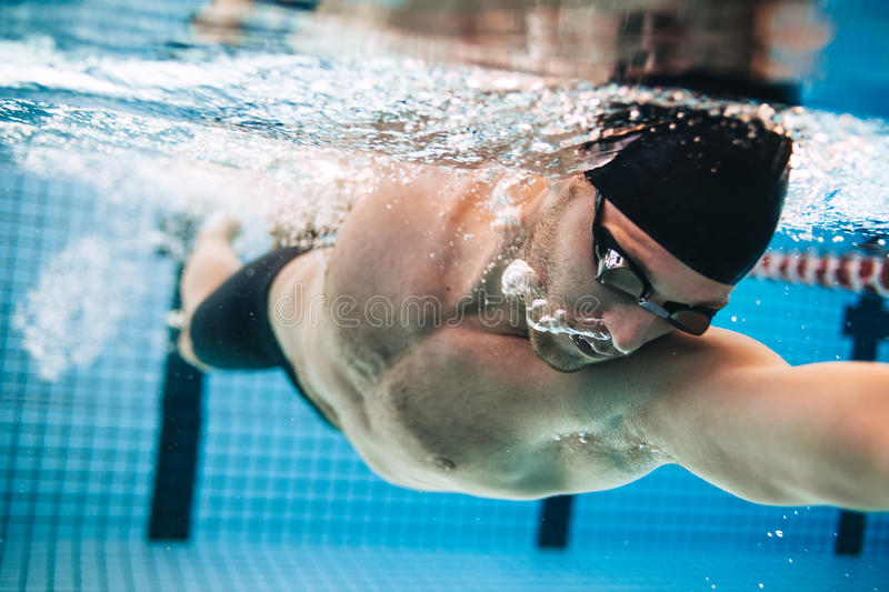 Male swimmer Under Water in Pool. Professional male swimmer practising in swimming pool. Underwater shot of young sportsman swimming in pool stock photos