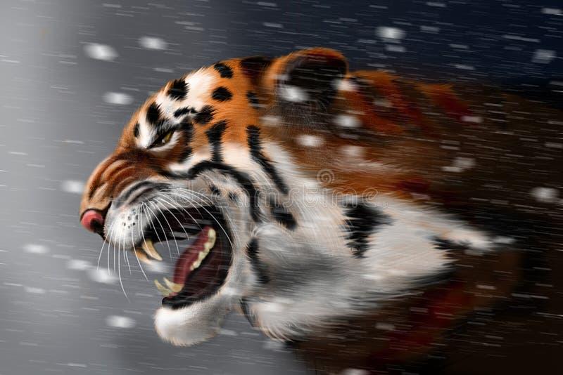 male tiger för ståendeprofilstirrande dig royaltyfri illustrationer