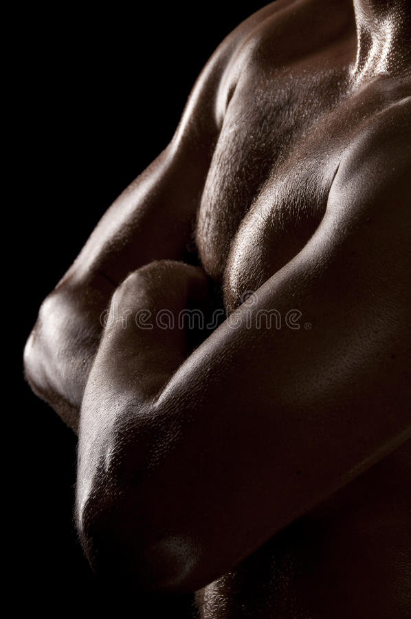 Male torso royalty free stock photos