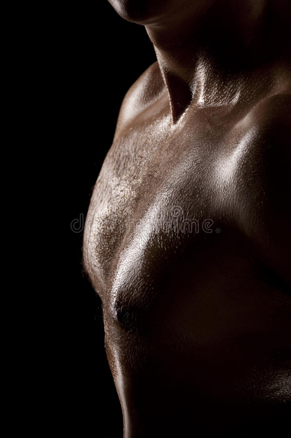 Male torso. Athletic male torso in dark key. Focus on the chest stock photography