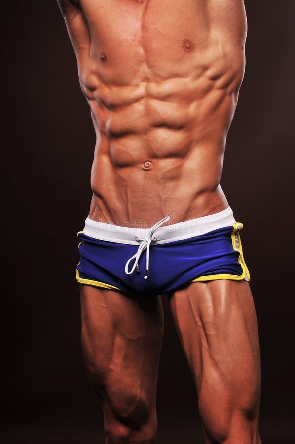 Download Male torso stock image. Image of bodybuilder, athlete - 23739631