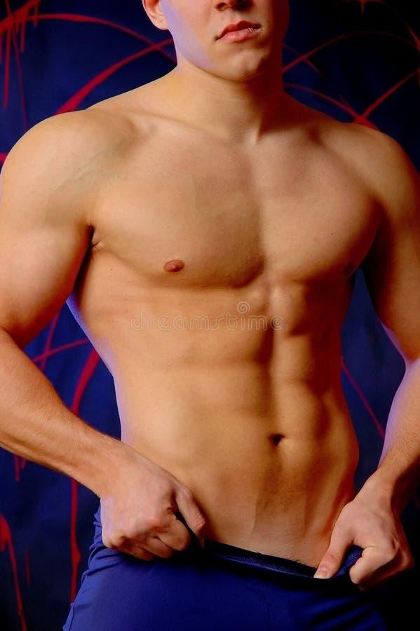 Download Male torso stock photo. Image of abdomen, pecs, blue, athletic - 457284