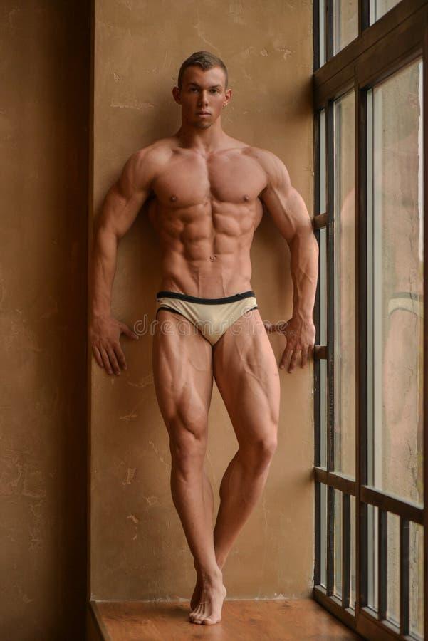 male torso royaltyfri foto