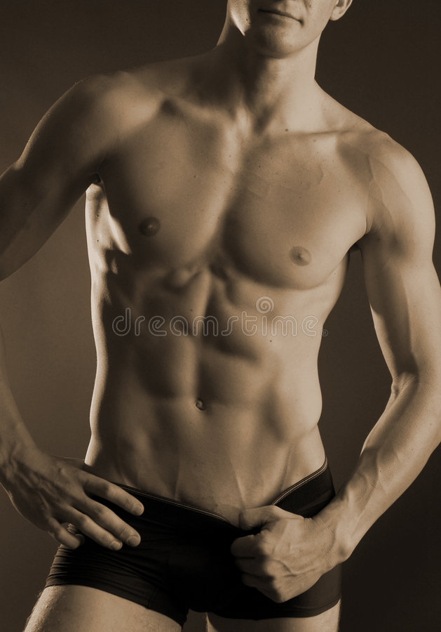 Download Male torso stock image. Image of male, dude, muscle, torso - 470369