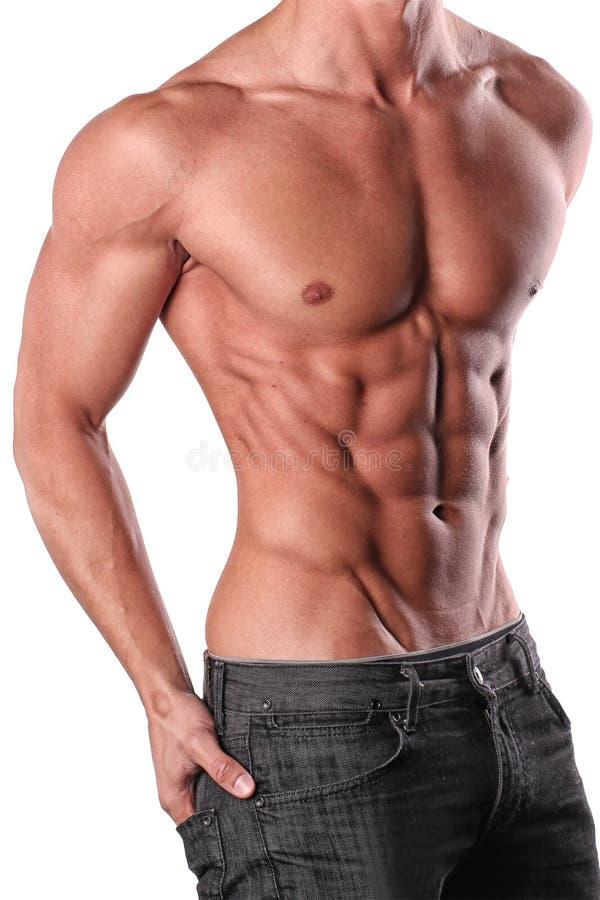 male torso royaltyfri fotografi