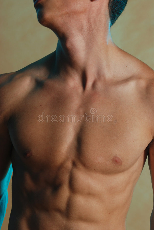 male torso royaltyfria foton