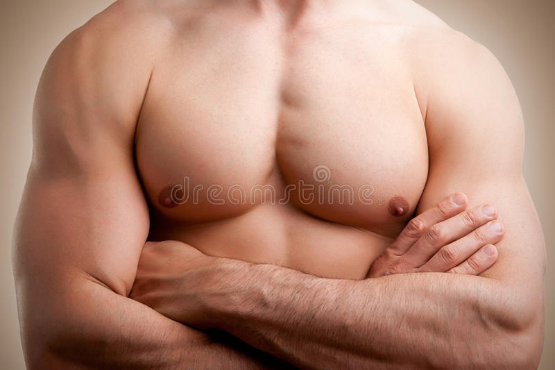 Download Male Torso stock photo. Image of pecs, abdominal, attractive - 31231664