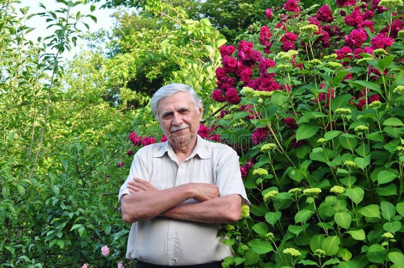 Male trädgårdsmästare i fjädraträdgården fotografering för bildbyråer