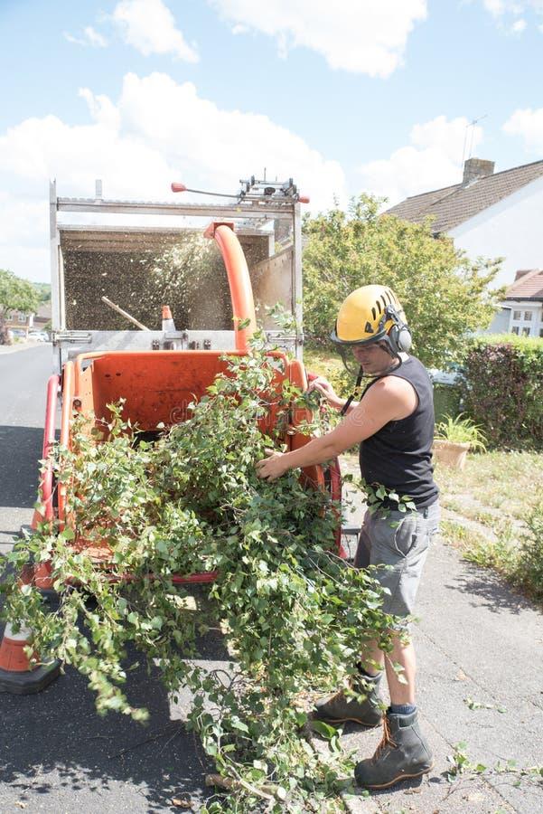 Loading a tree shredding machine stock photos