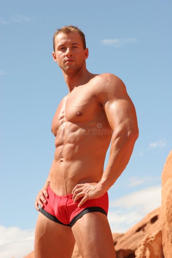 Free Male Underwear Model Royalty Free Stock Image - 1686516