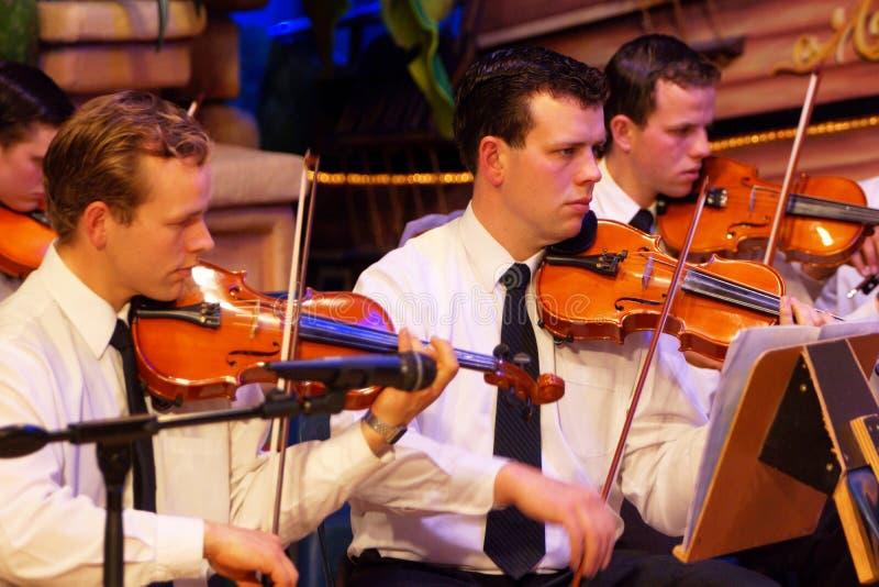Male violinister royaltyfri foto