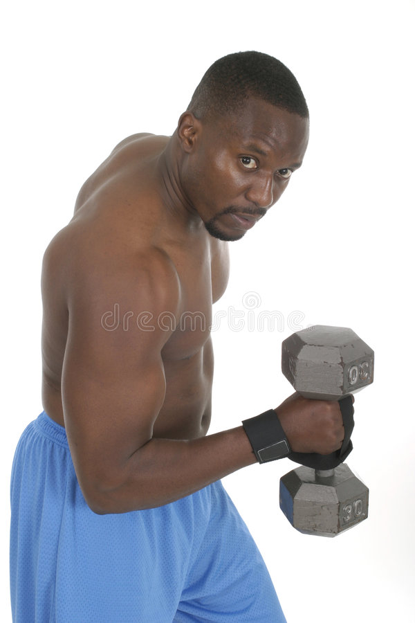 Male Weight Lifter 2. Handsome male with bulging muscles lifting weights royalty free stock image