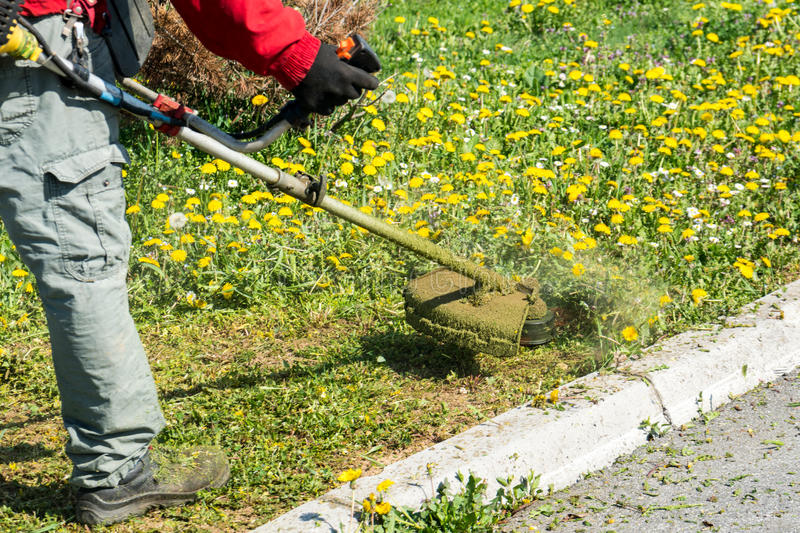 Male worker with power tool string lawn trimmer mower. Cutting grass in park stock photo