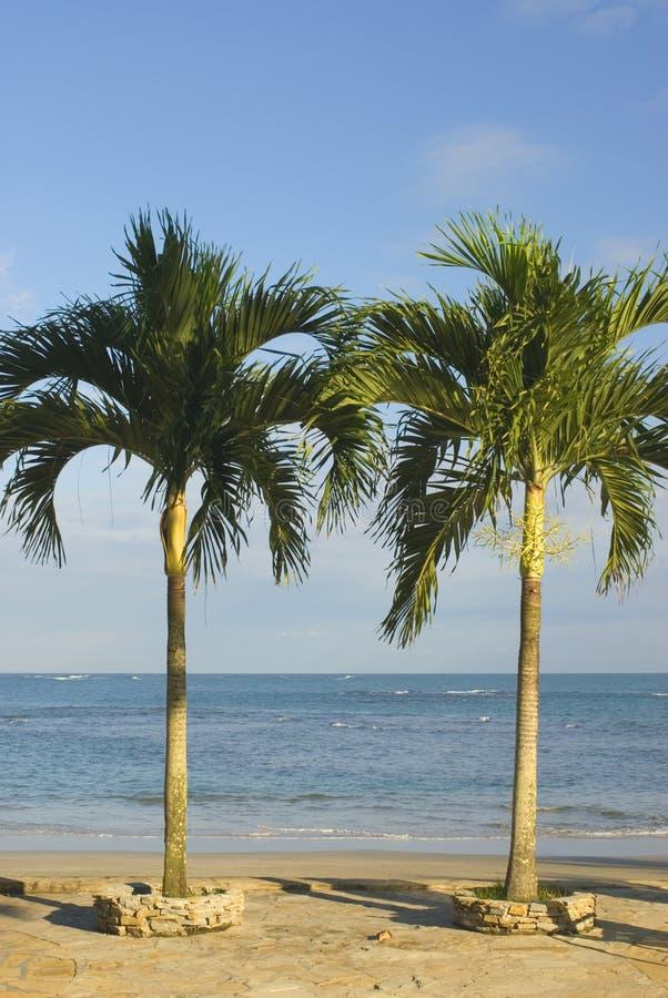 Malecon Santo Domingo fotografia stock