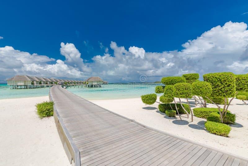Malediven-Inselstrand, Luxuswasserlandhäuser mit weißem Sand und frische grüne Büsche Luxuriöse Sommerferien in Malediven stockfotos