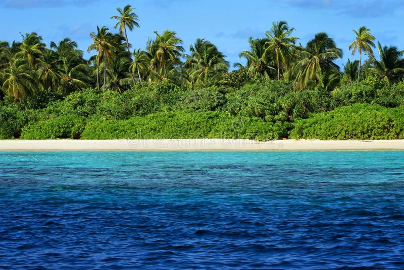 Malediven: Paradies-Insel lizenzfreie stockfotografie