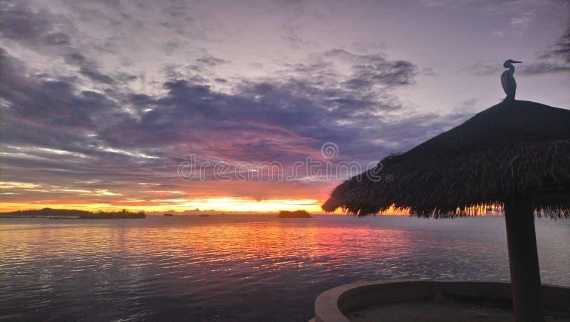 Maledives sunset over sea stock photos