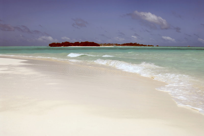 Maledivische Insel stockfotos