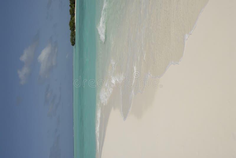 Maledivische Insel lizenzfreie stockfotografie