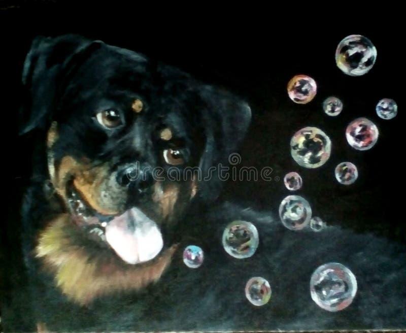 Malender 'Hund fängt der Seifenblasen stockbilder
