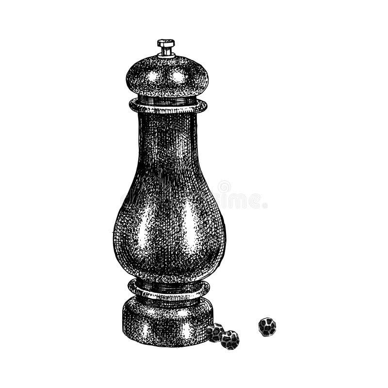 Maler utdragen peppar för handen royaltyfri illustrationer