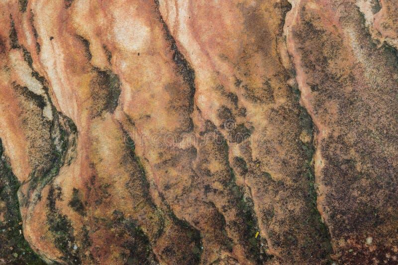 Malerei auf dem Wandhintergrund stockbilder