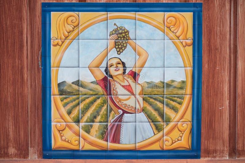Malerei der Frau Trauben in einem Weinberg auswählend gezeichnet auf Fliesen lizenzfreie stockbilder