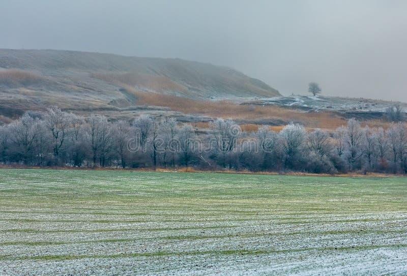 Malerische Felder im Winter Erster Schnee lizenzfreie stockfotografie