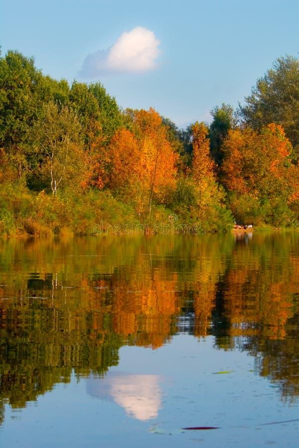 Malerische Herbstlandschaft von Fluss und von hellen Bäumen, Wolke am Himmel lizenzfreie stockfotos
