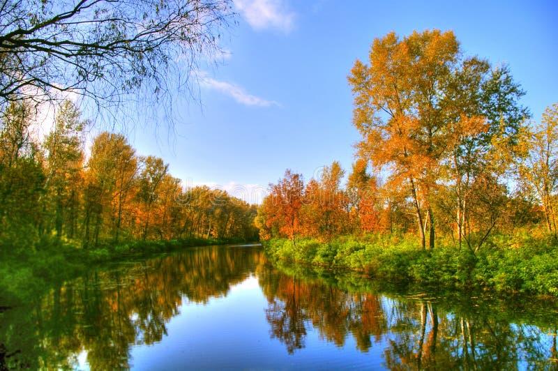 Malerische Herbstlandschaft von unveränderlichem Fluss und von hellen Bäumen stockbild