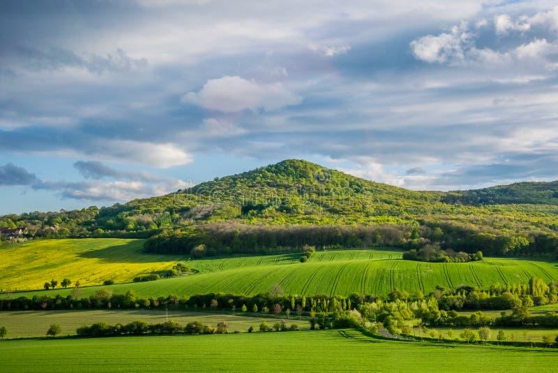 Malerische Landschaften von landwirtschaftlichem Europa Frühlingsfelder in Böhmen stockbild