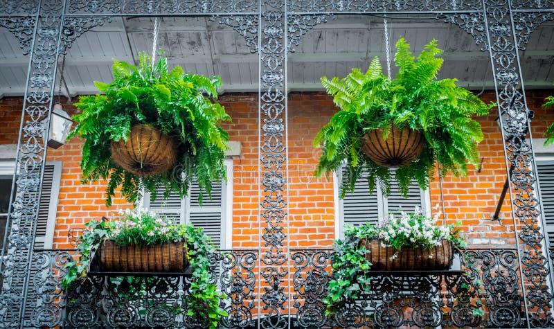 Malerische Privathäuser im französischen Viertel Balkon- und Schmiedeeisengitter Traditionelle Architektur von altem New Orleans lizenzfreies stockfoto