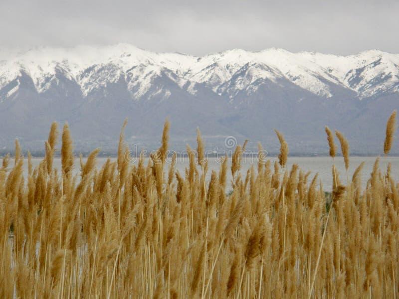 Malerischer szenischer Alp Mountain View lizenzfreies stockbild