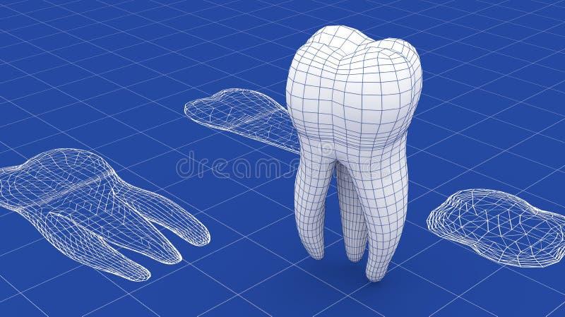 Malha do dente sobre um modelo imagens de stock royalty free