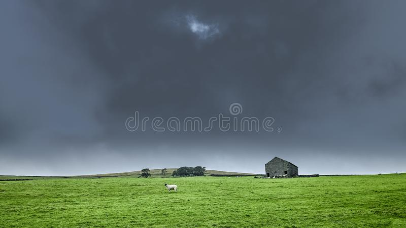 Drizzle and overcast view of Malham Moor, North Yorkshire stock photography