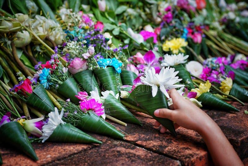 Mali bukiety dla kondolencje i współczucia wyrażenia obraz royalty free