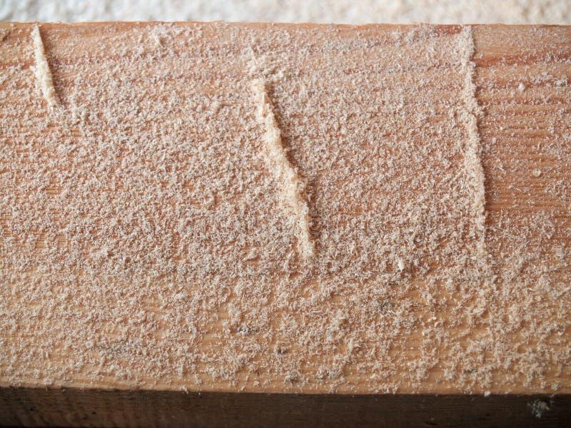 Mali drewniani układy scaleni na belkowatym zbliżeniu obraz royalty free